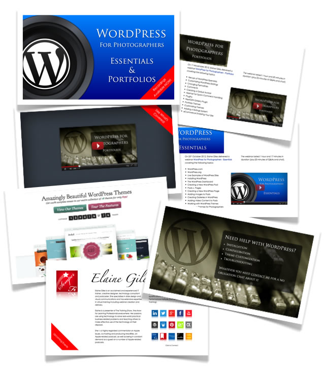 WordPress for Photographers training