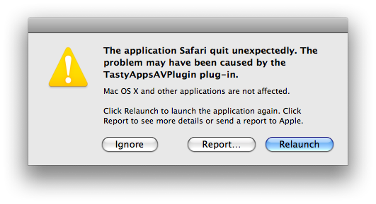 Safari 4 error message