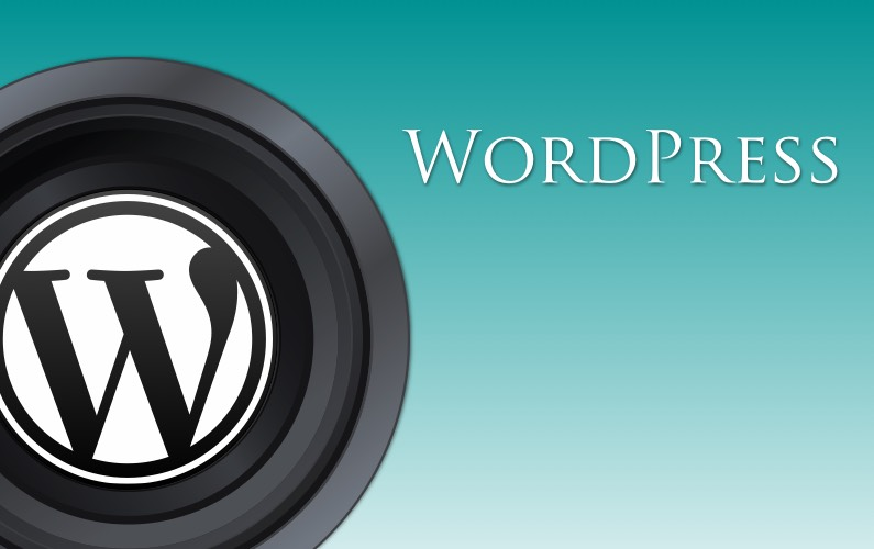 WordPress First Steps