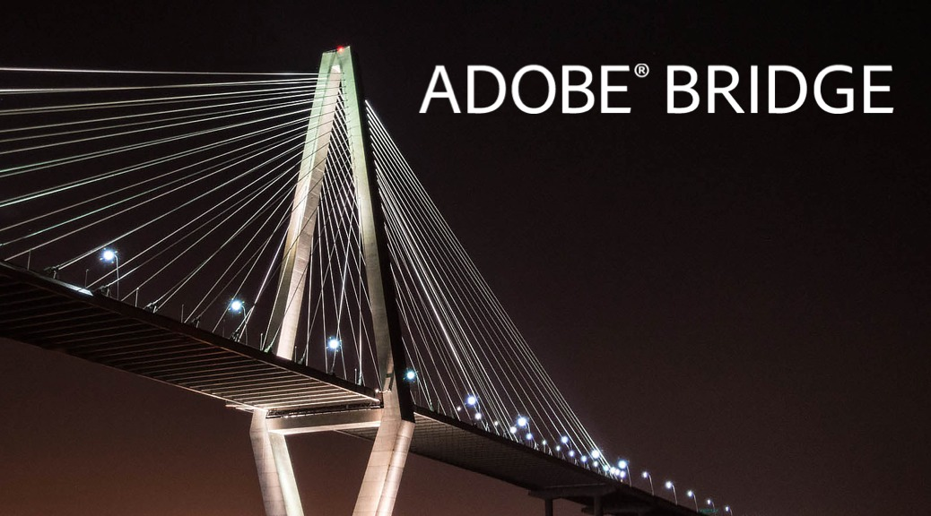 Adobe Bridge Free Training