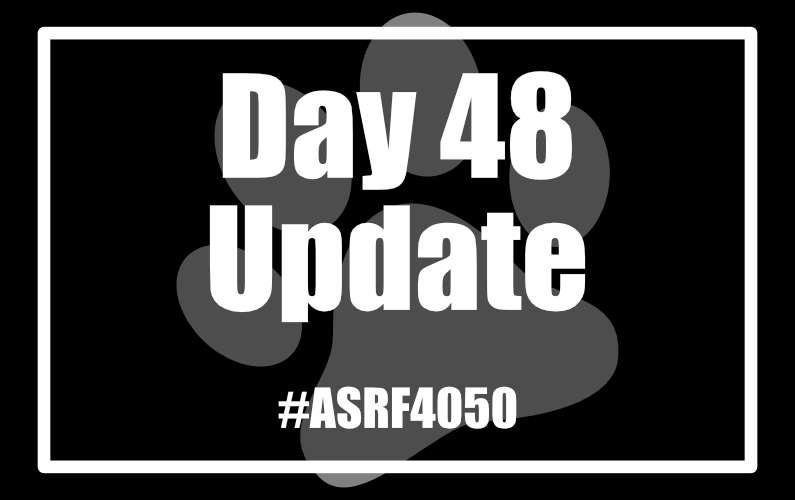 #ASRF4050 Day 48