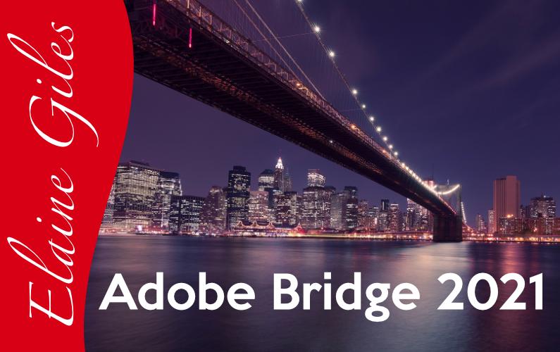 Adobe Bridge 2021